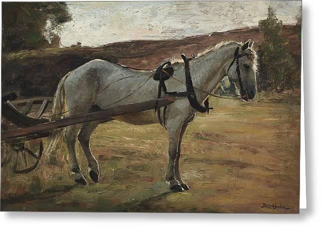 Horse Bismarck In Rya Hisingen Greeting Card