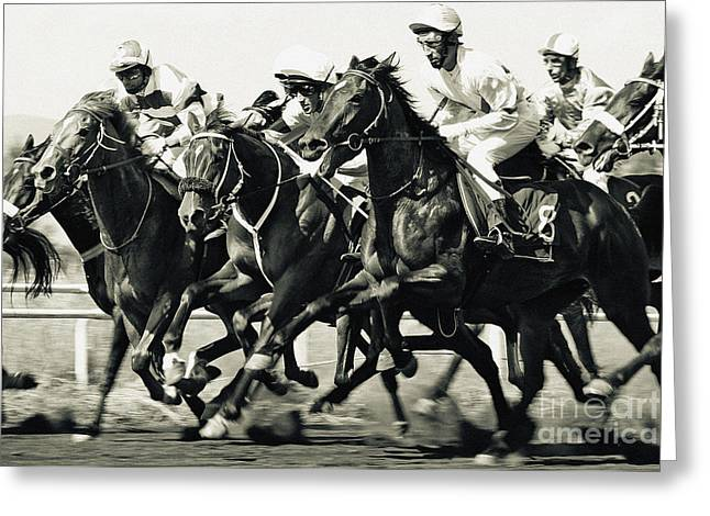 Horse Competition Vi - Horse Race Greeting Card