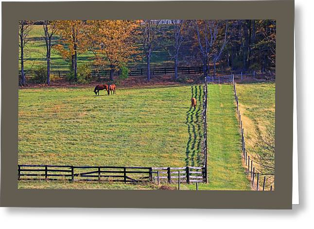 Horse Country # 2 Greeting Card