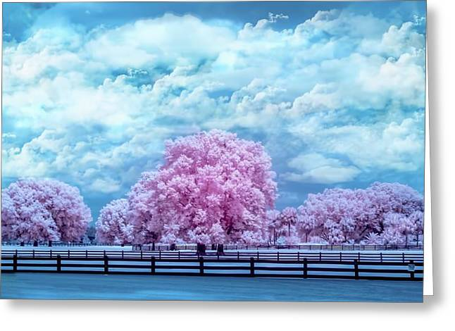 Greeting Card featuring the photograph Horse Country In Pink by Louis Ferreira