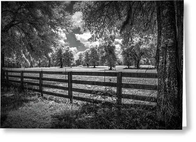 Greeting Card featuring the photograph Horse Country by Louis Ferreira