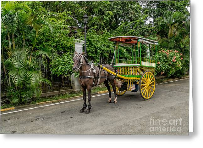 Horse Drawn Greeting Card by Adrian Evans