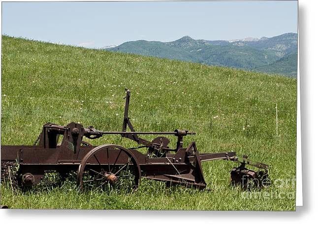 Greeting Card featuring the photograph Horse Drawn Ditch Digger by Daniel Hebard
