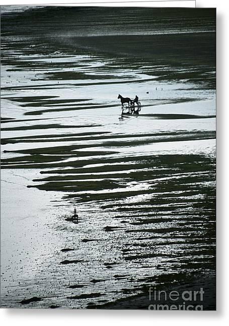 Horse-drawn Gig On Beach Greeting Card by Girts Gailans