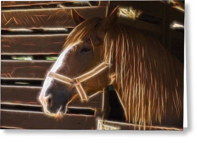 Horse Electric Greeting Card by Chris Flees