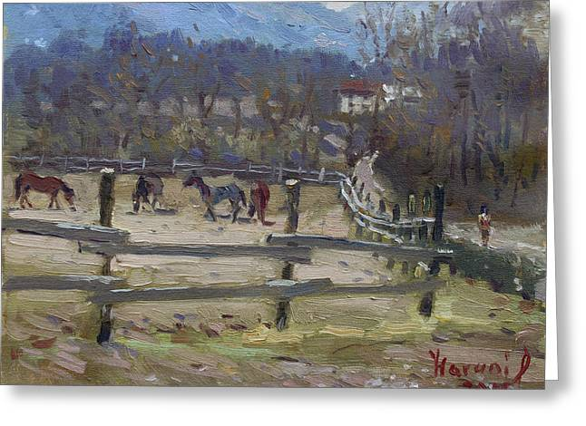 Horse Farm In Limana Greeting Card by Ylli Haruni