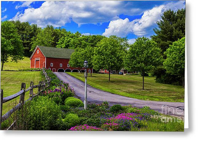 Horse Farm In New Hampshire Greeting Card