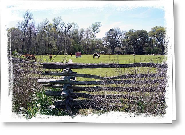 Horse Farm Greeting Card by Ralph  Perdomo