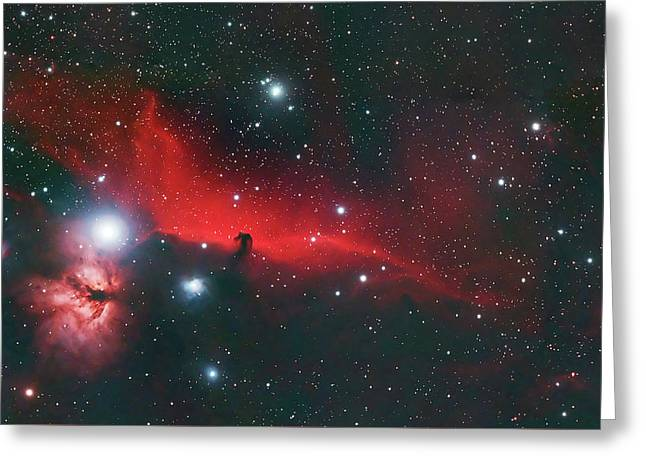 Horse Head And Flame Nebula Greeting Card