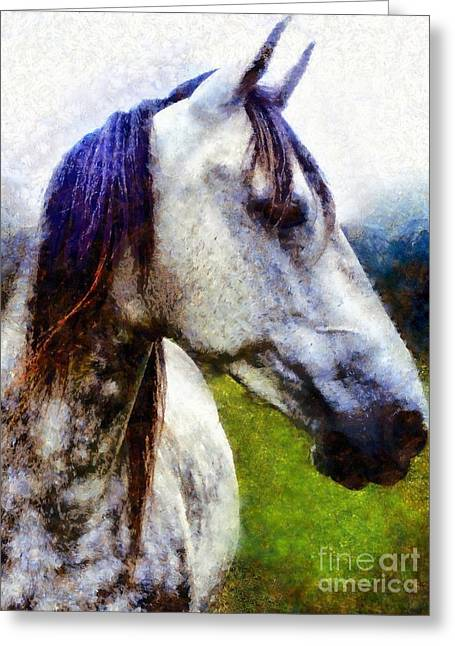 Horse I Dream Of You Greeting Card