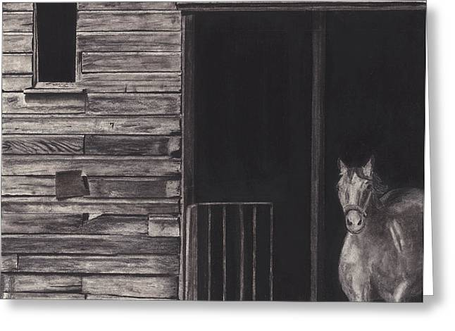 Horse In Barn Greeting Card
