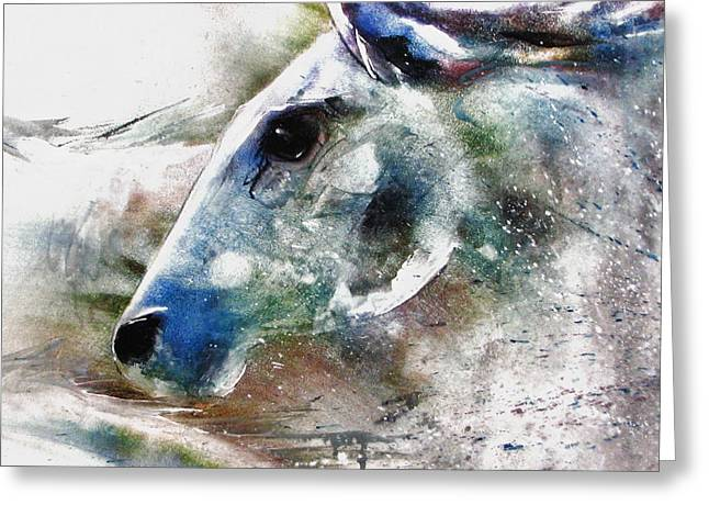 Horse Of Color Greeting Card