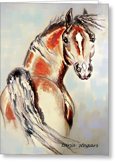 Horse Of My Heart Greeting Card