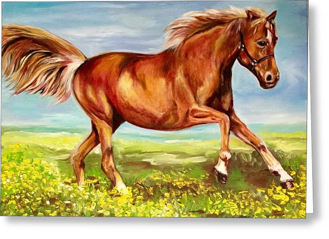 Horse On A Field  Greeting Card by Olga Koval