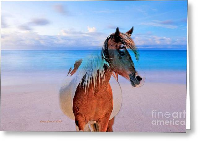 Horse On The Beach Greeting Card