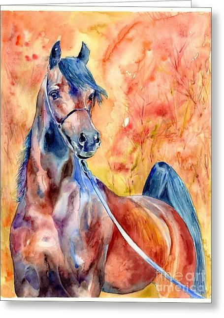 Horse On The Orange Background Greeting Card