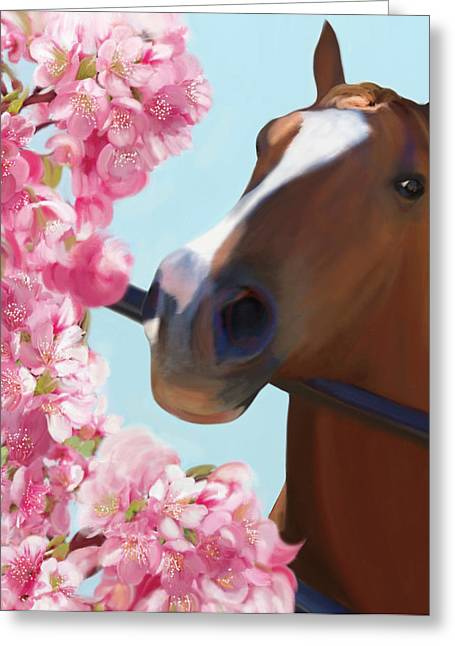 Horse Pink Blossoms Greeting Card by Julianne Ososke