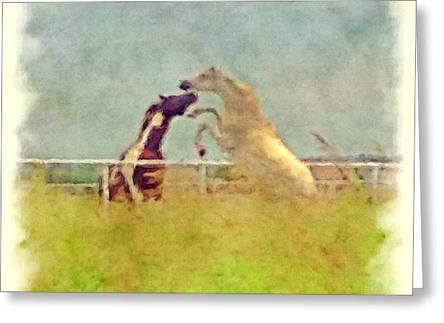Horse Play 2 Greeting Card