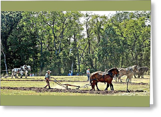 Horse Plow Pull, Howell Farm 9-15 4 Teams Shown. Greeting Card by Valerie Stein