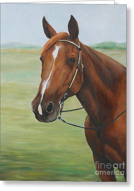 Horse Portrait Greeting Card by Charlotte Yealey