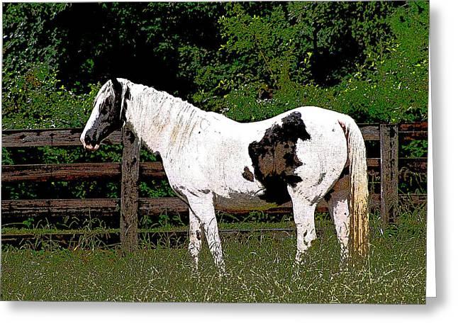 Horse Post Greeting Card by Debra     Vatalaro