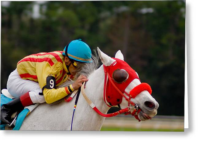 Horse Racing Greeting Card by Patrick  Flynn