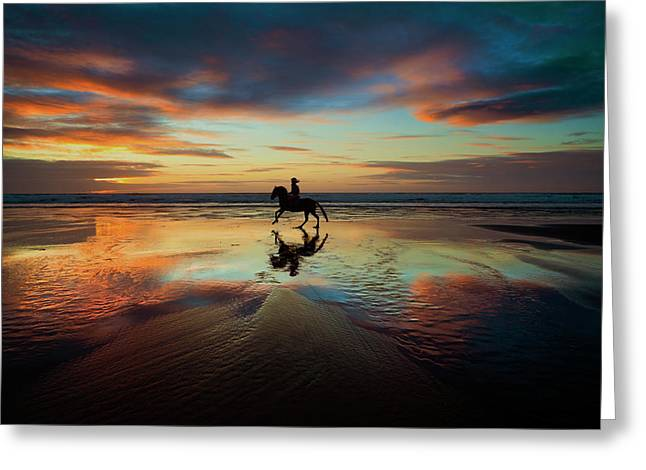 Horse Rider Reflections At Widemouth Beach Greeting Card