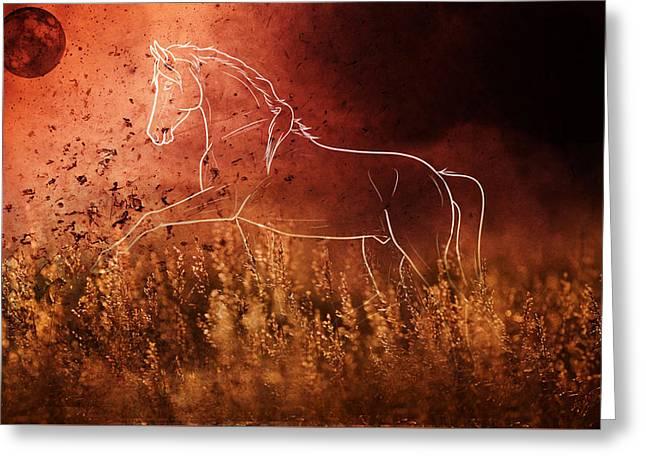 Horse Running In Field Greeting Card