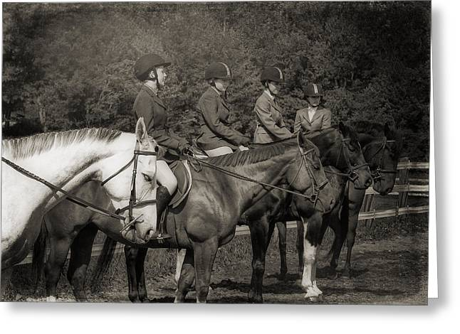 Horse Sense Greeting Card by JAMART Photography