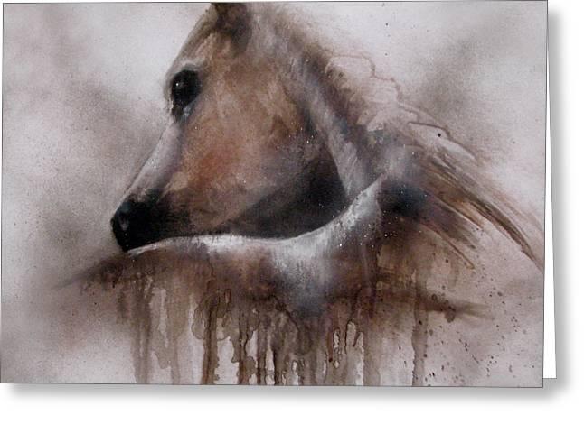 Horse Shy Greeting Card