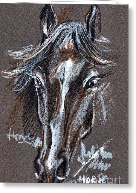 Horse Study Greeting Card by Daliana Pacuraru
