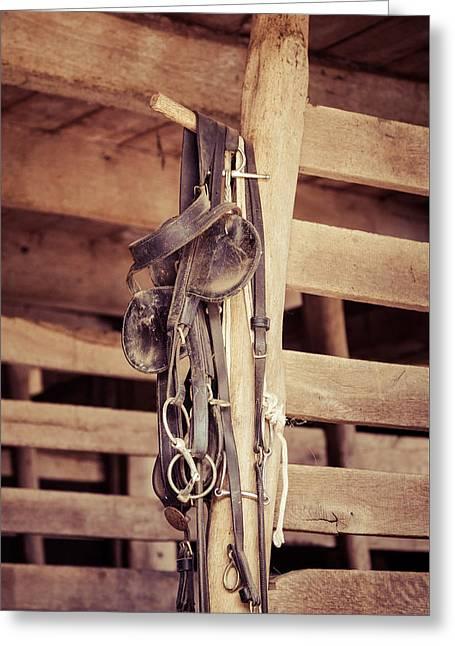 Horse Tack Greeting Card by Erin Cadigan
