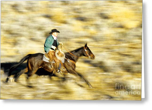 Horseback Rider Greeting Card by Inga Spence