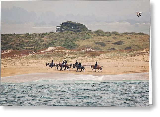 Horseback Riding On The Beach Greeting Card by Deana Glenz