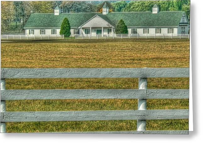 Horseland Greeting Card by David Bearden