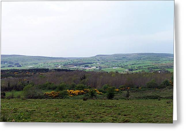 Horses At Lough Arrow County Sligo Ireland Greeting Card