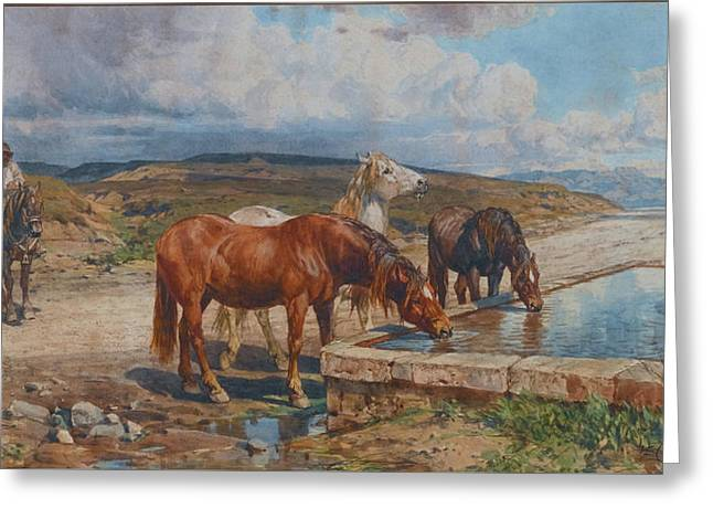 Horses Drinking From A Stone Trough, By Enrico Coleman Greeting Card