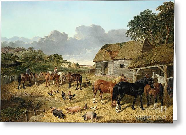 Horses Drinking From A Water Trough, With Pigs And Chickens In A Farmyard Greeting Card