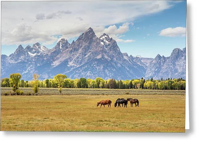 Horses Grazing Beneath Grand Teton Peak Greeting Card by TL  Mair
