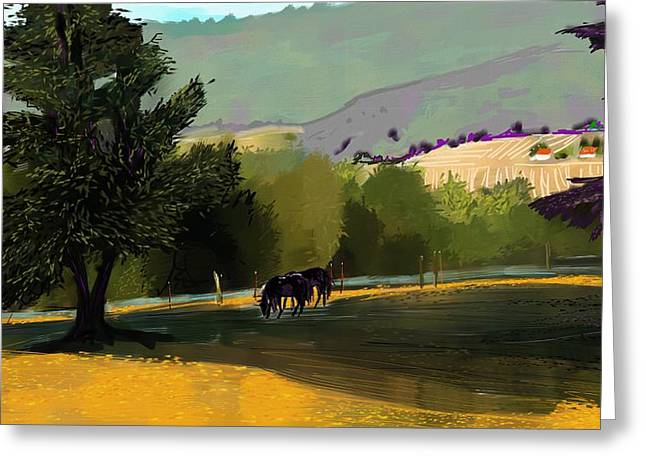 Horses In Field Greeting Card