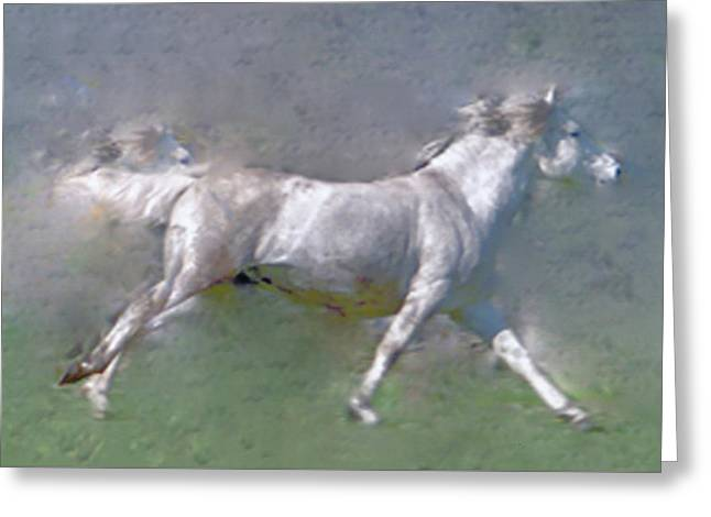 Horses On The Move Greeting Card by Patricia Keller