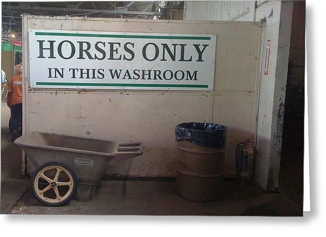 Horses Only Greeting Card by Bill Kellett