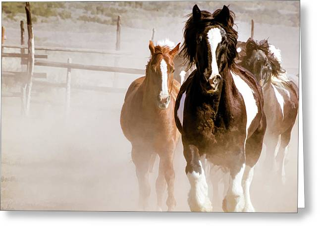 Greeting Card featuring the digital art Horses Running Into A Dusty Ranch Corral by Nadja Rider
