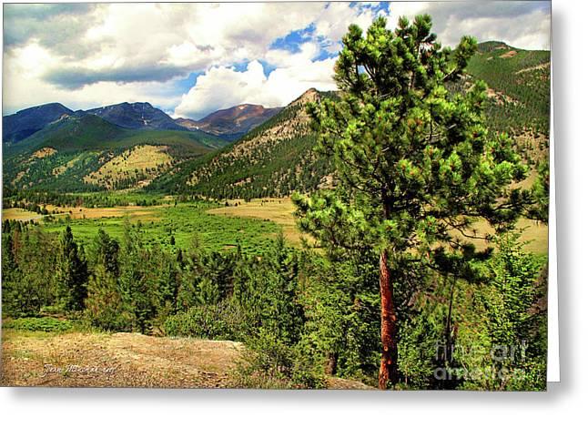 Horseshoe Park, Rocky Mountain, Colorado Greeting Card by Joan Minchak