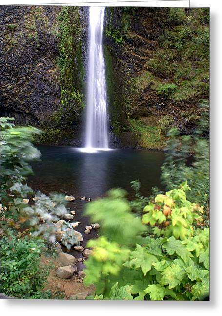 Horsetail Falls Basin Greeting Card by Marty Koch