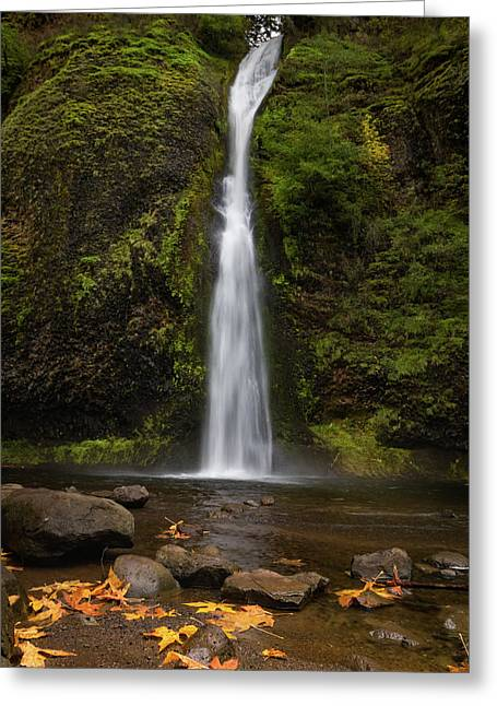 Horsetail Falls Greeting Card by C Steele
