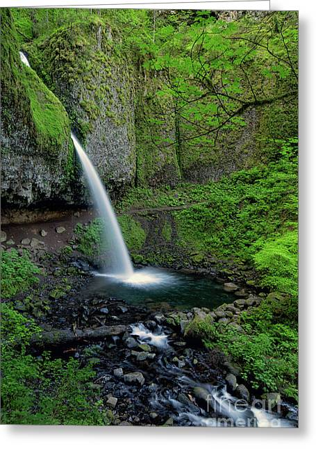 Horsetail Falls Waterfall Art By Kaylyn Franks Greeting Card