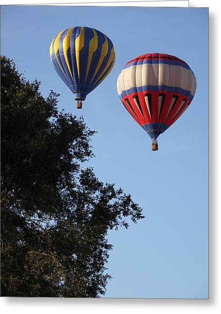 Hot Air Balloons Over Dansville Ny Greeting Card