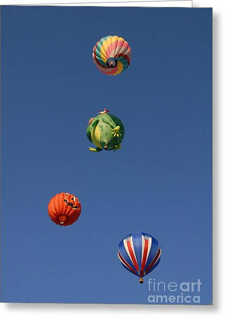 Hot Air Rally Greeting Card by Dennis Hammer
