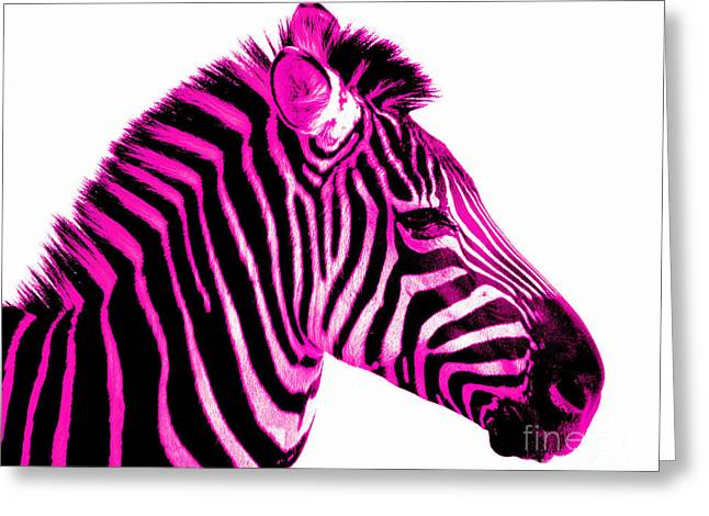 Hot Pink Zebra Greeting Card by Rebecca Margraf
